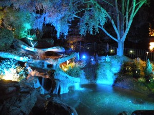 Pixie Hollow at Night