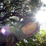 Pixie Hollow - Entrance