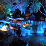 Pixie Hollow - Night 1