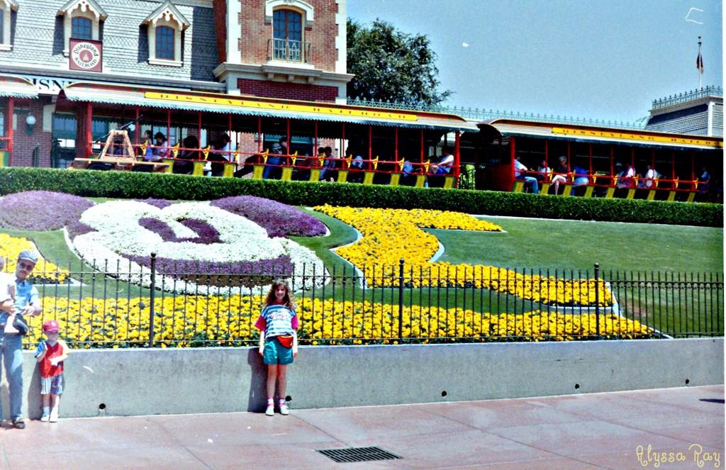1993 Entrance