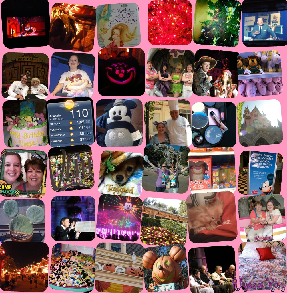 2010 Blog Collage